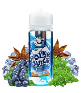 Heizen Berry Ice 100ml - Polar Juice
