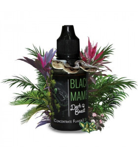 BLACK MAMBA 30 ml - DARK BEAST CONCENTRATE